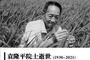 """默哀:青创网致敬缅怀""""杂交水稻之父""""袁隆平院士"""