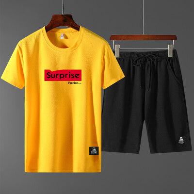黑插白休闲裤运动套装短裤2019新款短袖t桖T恤蚂蚁皱两件套